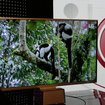 LG's INFINIA ultra-slim HDTVs - photo 2