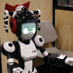 The five best robots of CES 2010 - photo 2