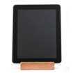 Touch wood with the iPad BlockDock - photo 1