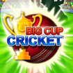 APP OF THE DAY: Big Cup Cricket (Android) - photo 1