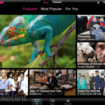 International BBC iPlayer iPad app to hit App Store - photo 2