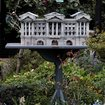 Birds tweet at Peckingham Palace - photo 5