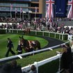 Nokia 808 PureView camera test at Royal Ascot - photo 2