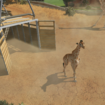 Zoo Tycoon Xbox One preview: If we could talk with the animals - photo 3