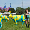 Going to Glastonbury and want free Wi-Fi? Just plonk yourself next to a cow - photo 4