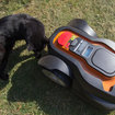 Worx Landroid robot lawnmower review - photo 3