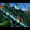 Donkey Kong Country Returns   - photo 5