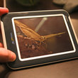 VIDEO: Qualcomm Mirasol hands-on - photo 2