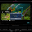 BBC iPlayer for iPad hands-on - photo 13