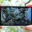 10 Top tips for better smartphone photography - photo 1
