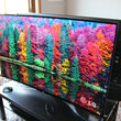 LG 55EA9800 Curved OLED: Stunning in the flesh, beautiful to behold - photo 4