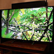 Sony KD-65X9005B 65-inch 4K TV review - photo 19