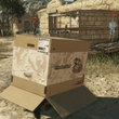 Metal Gear Solid 5: The Phantom Pain preview: Solid Snake is most definitely back - photo 8