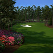 Tiger Woods PGA Tour 13  - photo 20