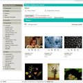 Flickr Collection launches on Getty Images