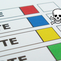 Pirate Party fails to score electoral success