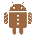 Android 3.0: Codename Gingerbread?