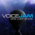 APP OF THE DAY: VoiceJam review (iPhone)