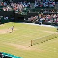 Wimbledon serves up BBC's first 3D action