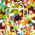 Jelly Bean touted as the next Android update
