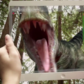 Corning's A Day Made of Glass 2 gives us a window into the future (video)