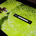 Microsoft Surface with PixelSense pictures and hands-on