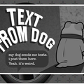 WEBSITE OF THE DAY: Text from Dog