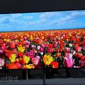Samsung OLED TV here before the end of 2012, but you better start saving now