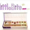 WEBSITE OF THE DAY: littleBits