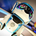 Teksta the Robotic Puppy (2013) pictures and hands-on