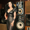 Is Dita Von Teese's 3D printed dress the sauciest use of the tech yet?