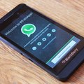 WhatsApp now available for BlackBerry 10: Free cross-platform messaging over data