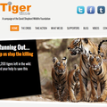 Website of the day: Tiger Time