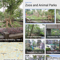Google Street View visits the zoo, captures panoramic views of China's Giant Pandas