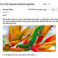 Gmail now displays images in email, thanks to Google's secure proxy servers