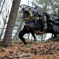 Google acquires futuristic company with robot that can run faster than Usain Bolt