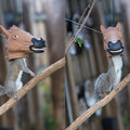 How to win Twitter: Horse head squirrel feeders