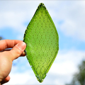 Mad-made leaf could make space travel and off-world colonisation possible