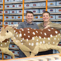 Secrets of a Lego master builder: What's involved in building a 500,000 piece Lego sleigh?