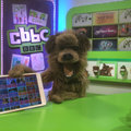 Go CBBC is the Beeb's first dedicated app for slightly older kids
