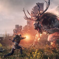 The Witcher 3 Wild Hunt review: The best role-player since Skyrim