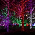 Tips for low light photography: Capture every Christmas moment