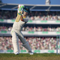 Cricket 19 review: Batting fun... with a huge catch