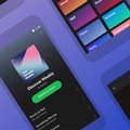 Spotify Lite app released for older smartphones and developing countries