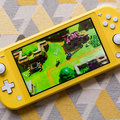 Nintendo Switch Lite review: Practically perfect in every way