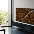 LG's 48-inch OLED CX model will cost £1499 when it launches in May