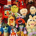 Muppets Now release date: New Disney+ original series to debut in July