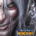 Warcraft III - The Frozen Throne - PC