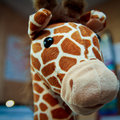HANNspree Giraffe 8 Digital Photo Frame