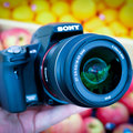 Sony Alpha SLT-A35  review